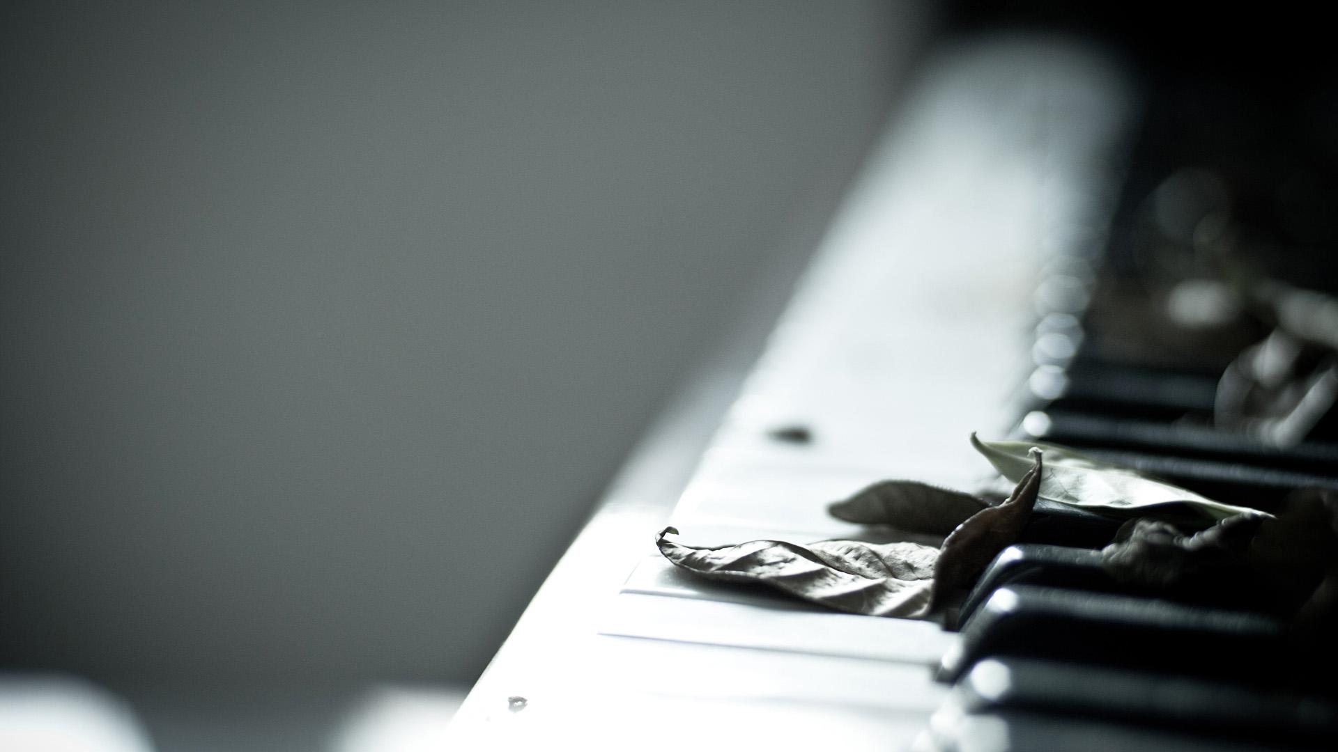 Листья на клавишах