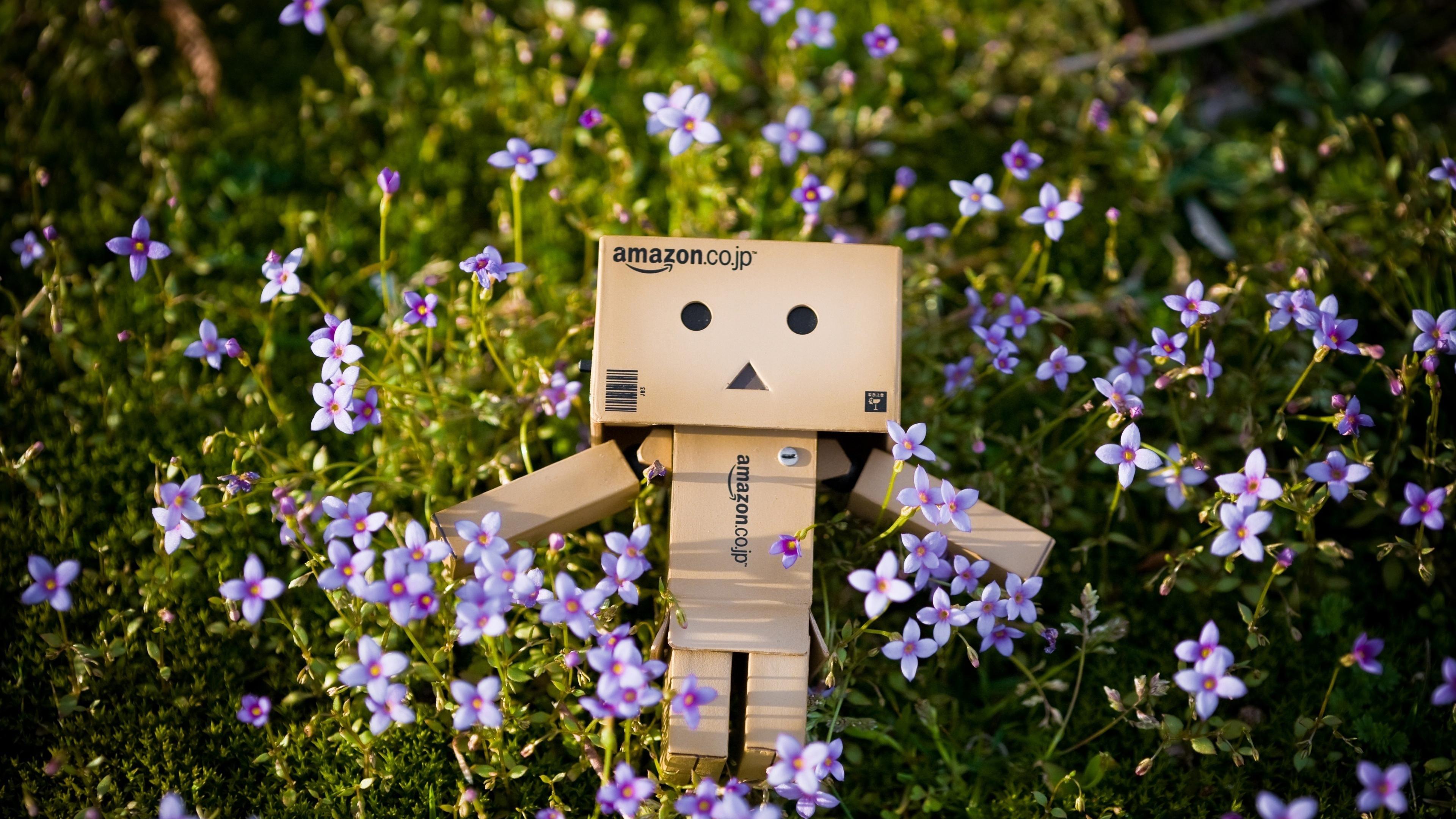 Робот Amazon в цветах