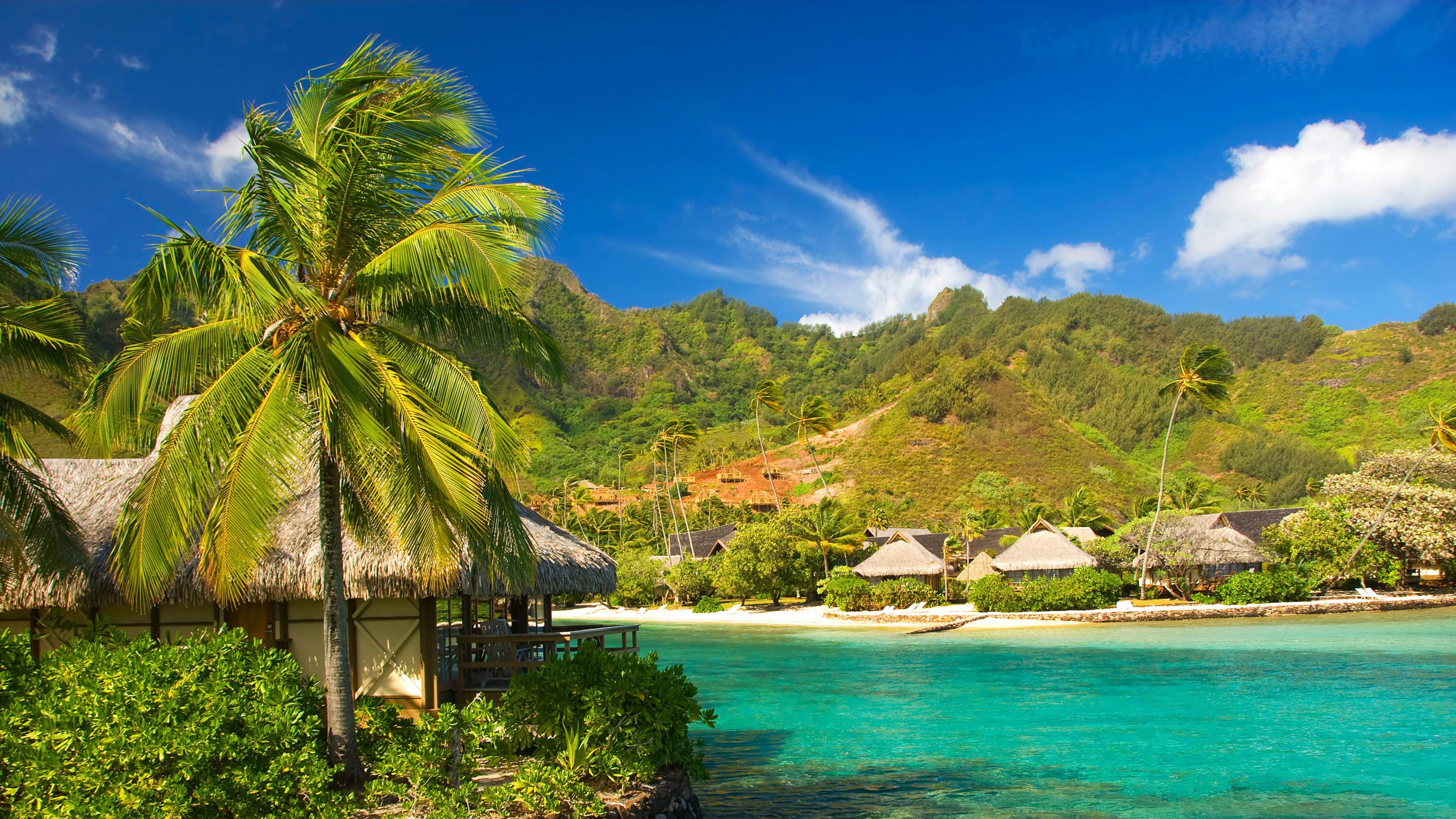 Отдых в тропиках