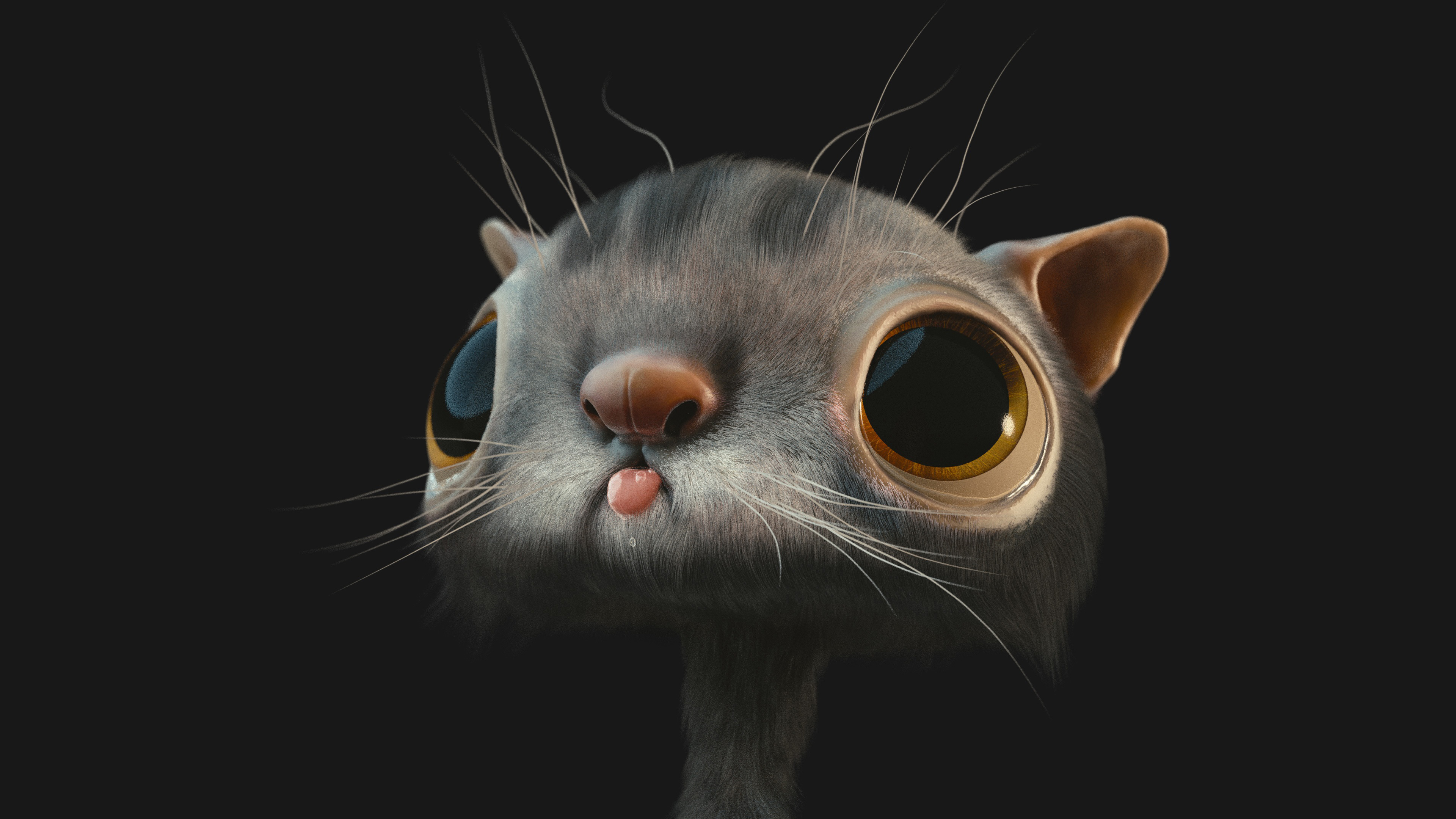 Смешной кот