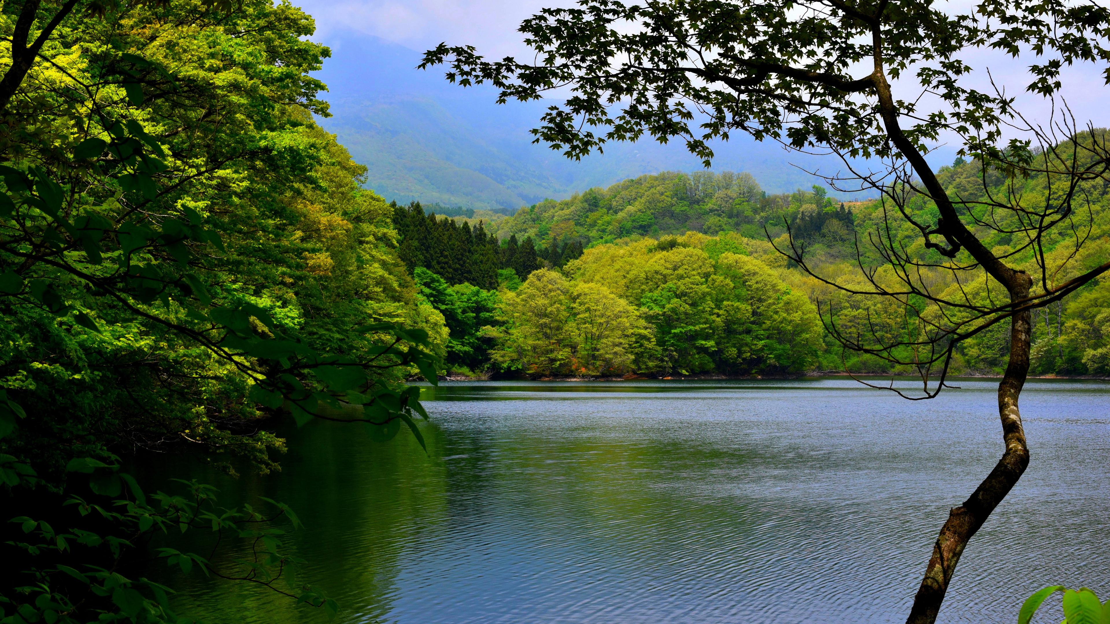 Зеленые холмы у озера