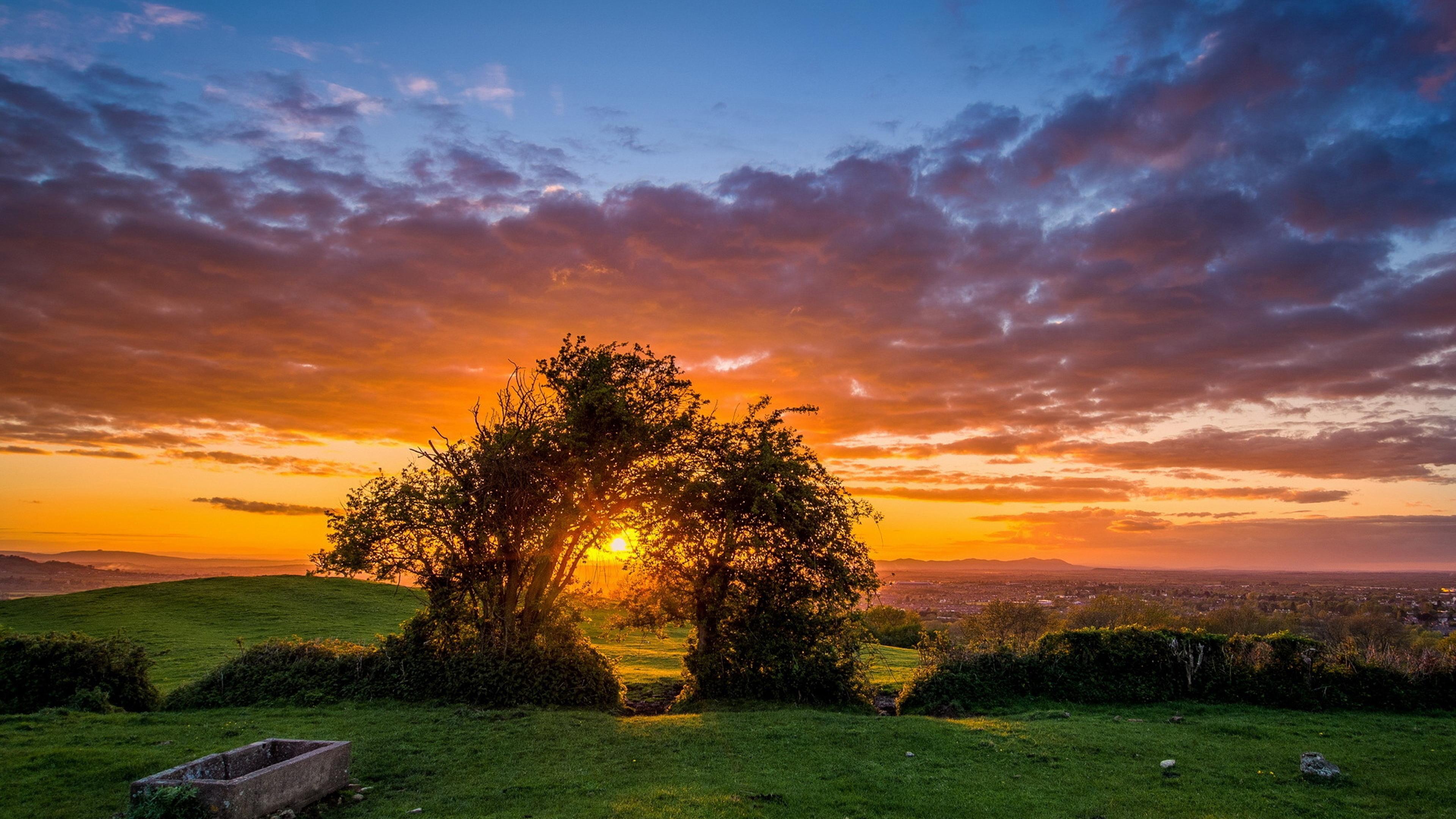 Золотой закат в поле