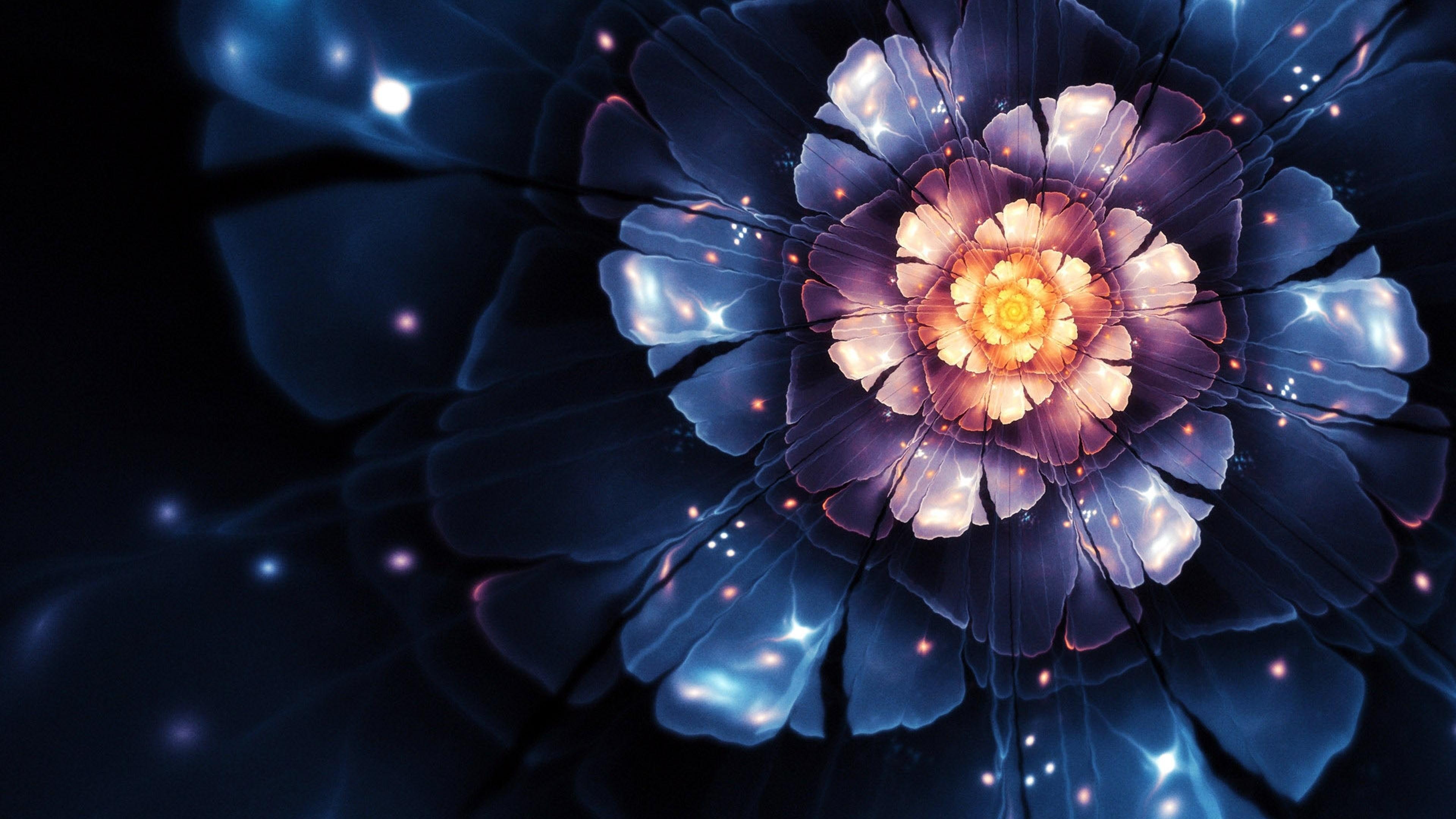Фантастический цветок в ночном небе