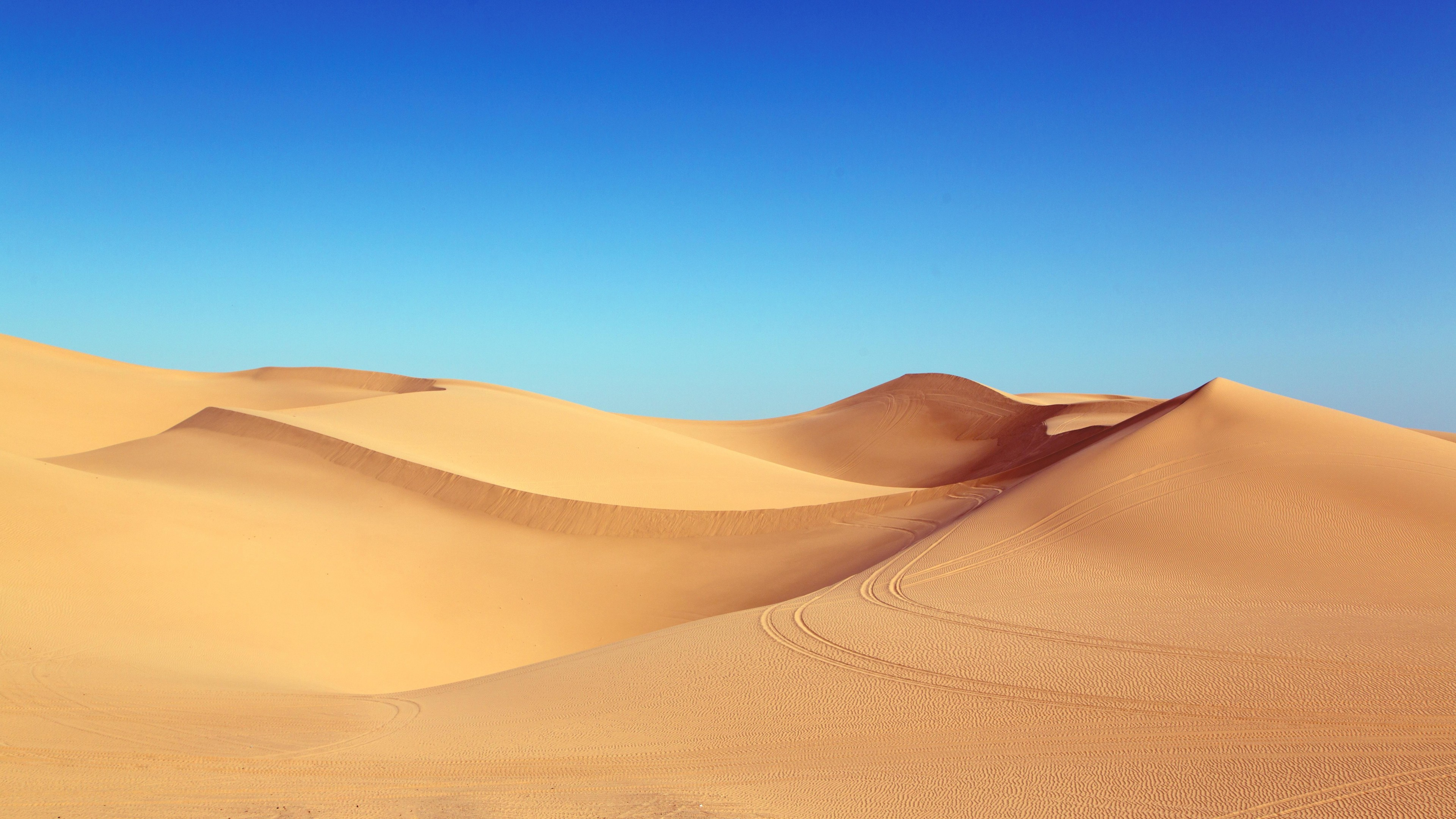 Песчаные дюны и барханы