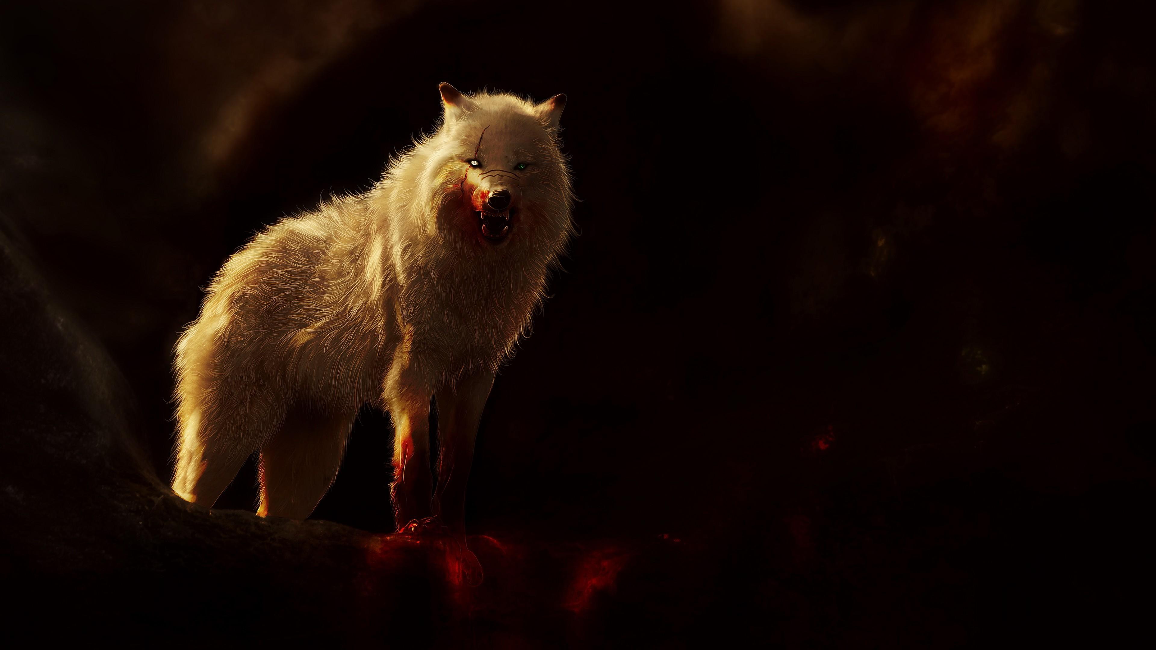 Зимний волк-волшебный зверь
