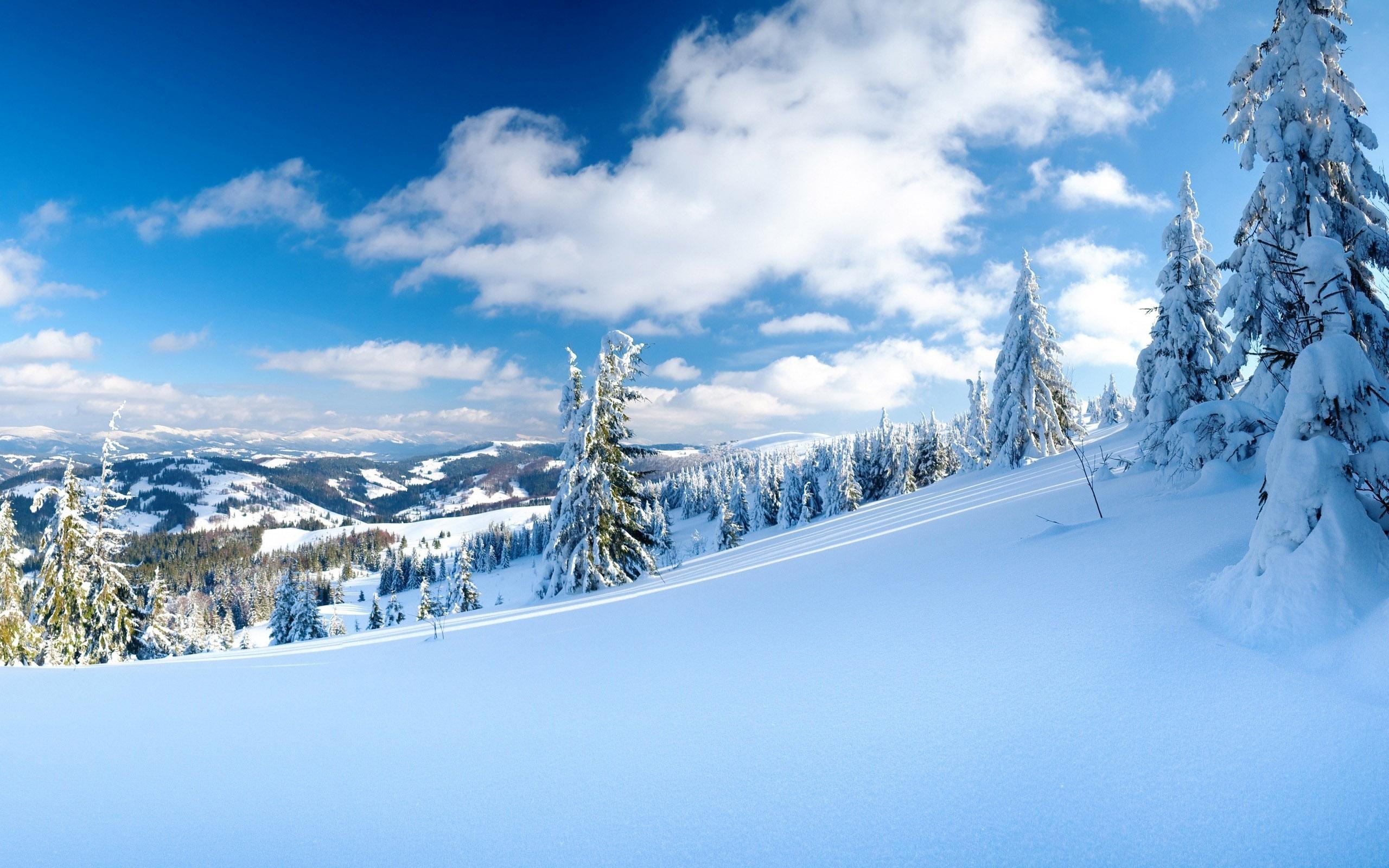 Зима и солнце на склоне в горах
