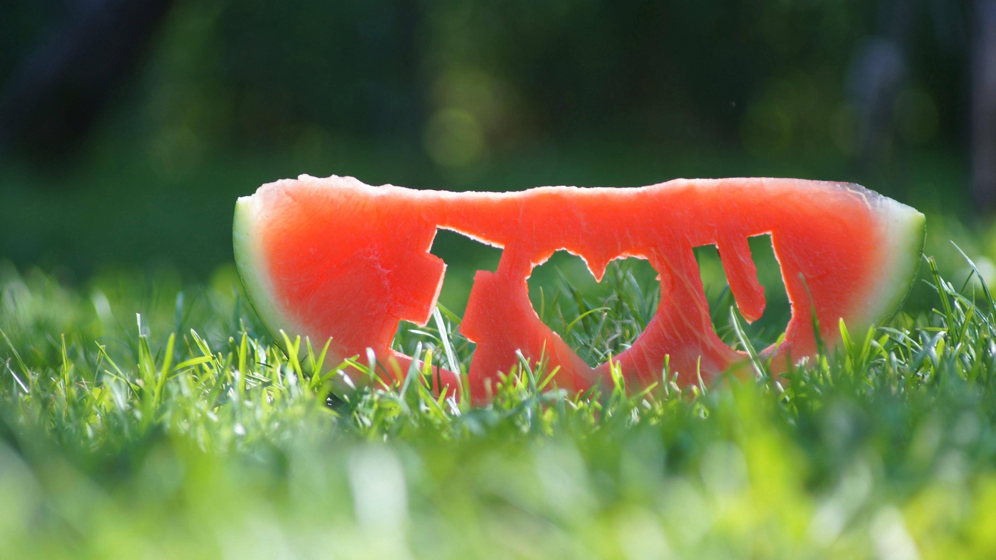 """Ломтик спелого арбуза с символами и знаками """"Я люблю тебя"""""""