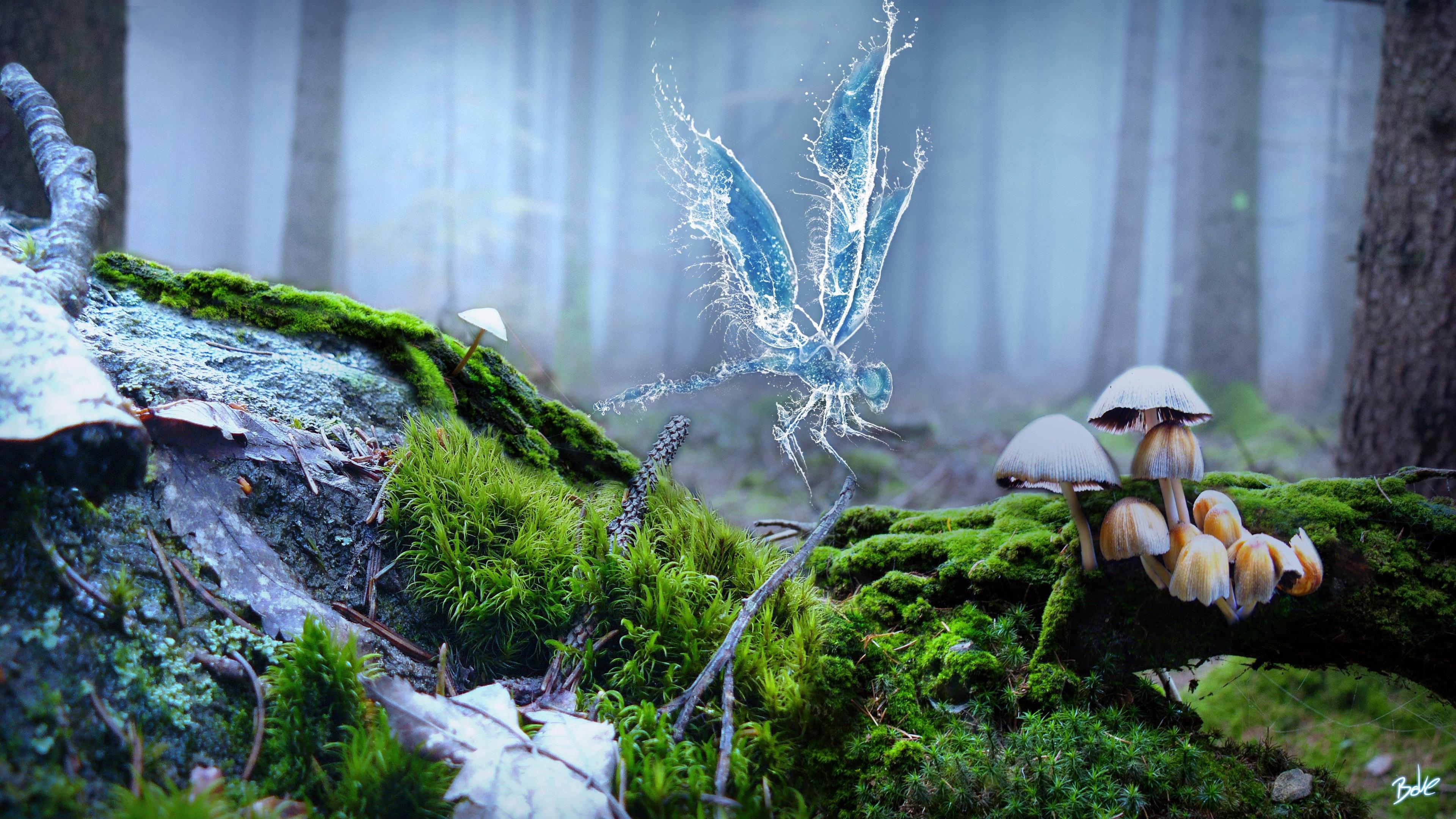 Стрекоза с волшебными крыльями в туманном лесу с ярко-зеленным мхом и ядовитыми грибами