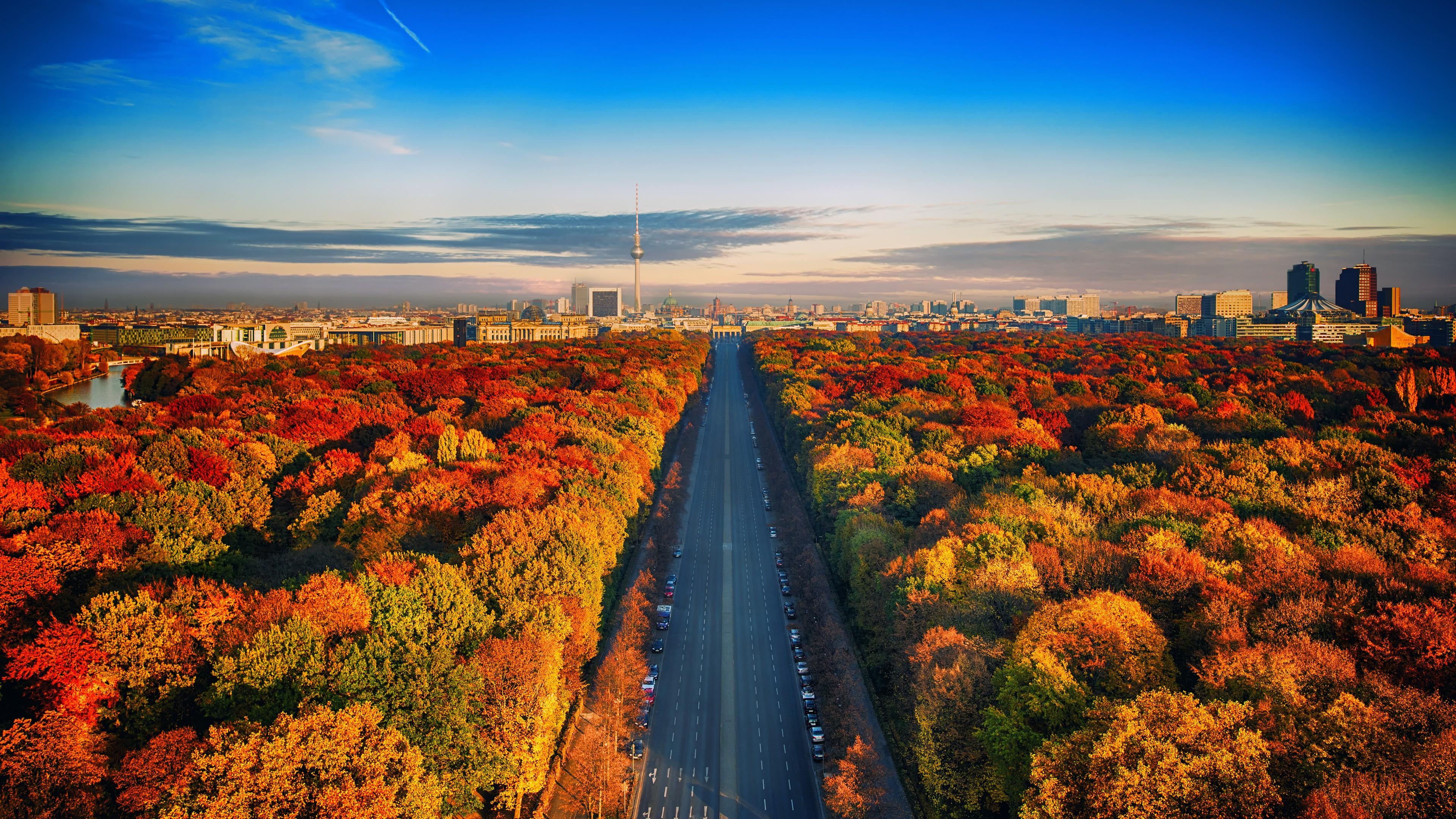 Красивый осенний парк с красно-рыжей и золотой листвой над ярко-синим безоблачным небом