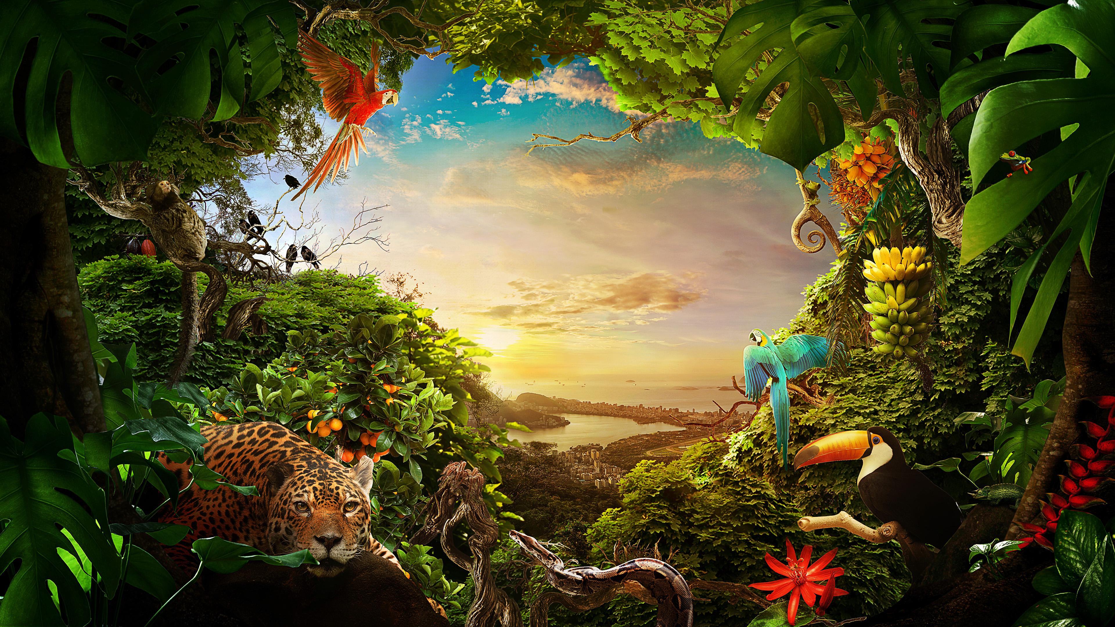 Волшебный сказочный лес с яркой зеленью,пятнистой рысью,необыкновенно красивыми птицами,голубого неба