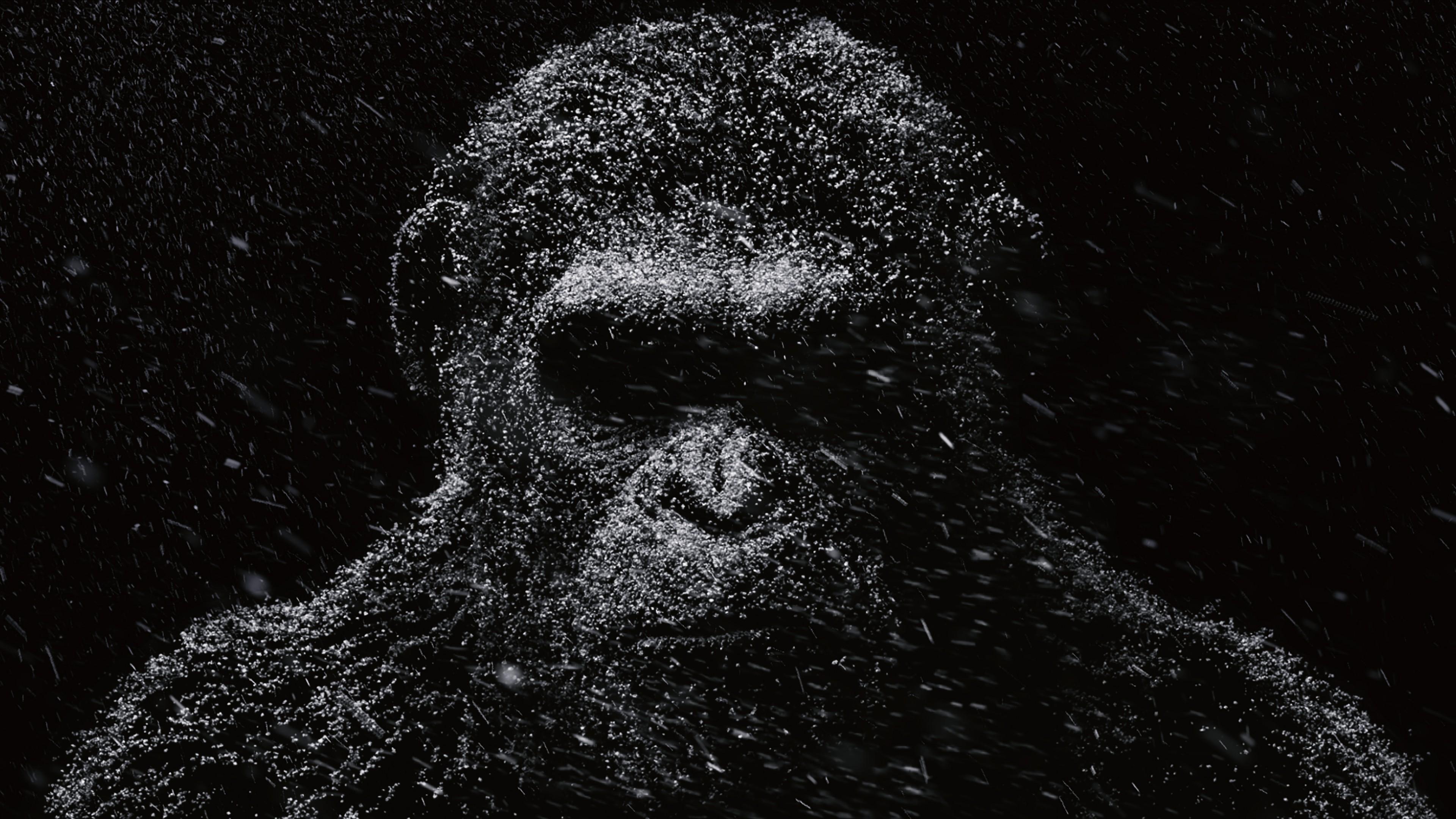 Черная обезьяна с впавшими глазницами в отблесках лунного света
