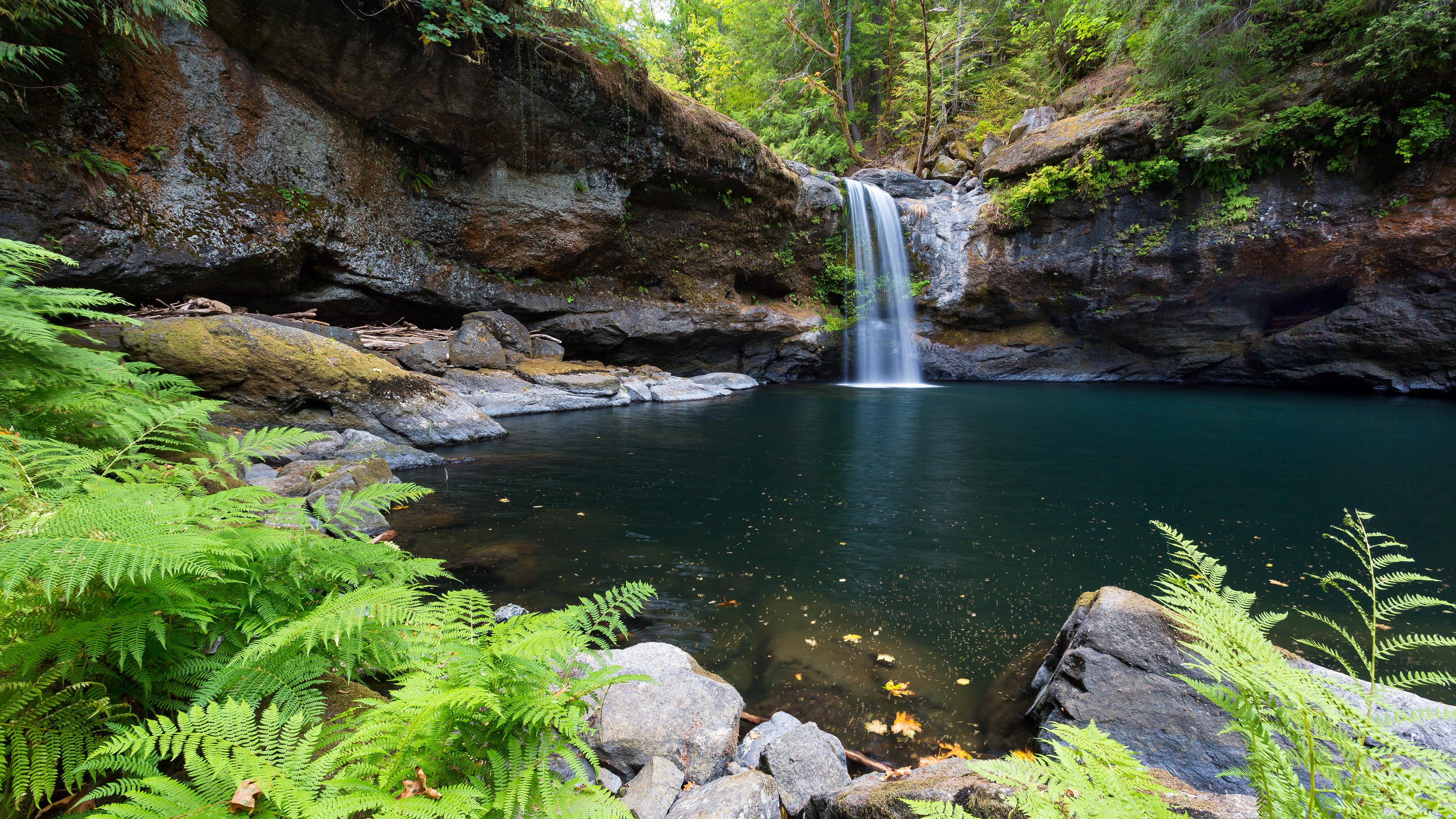 Горный водопад с хрустальными брызгами падающий в озеро,окруженным пышной зеленью папоротника