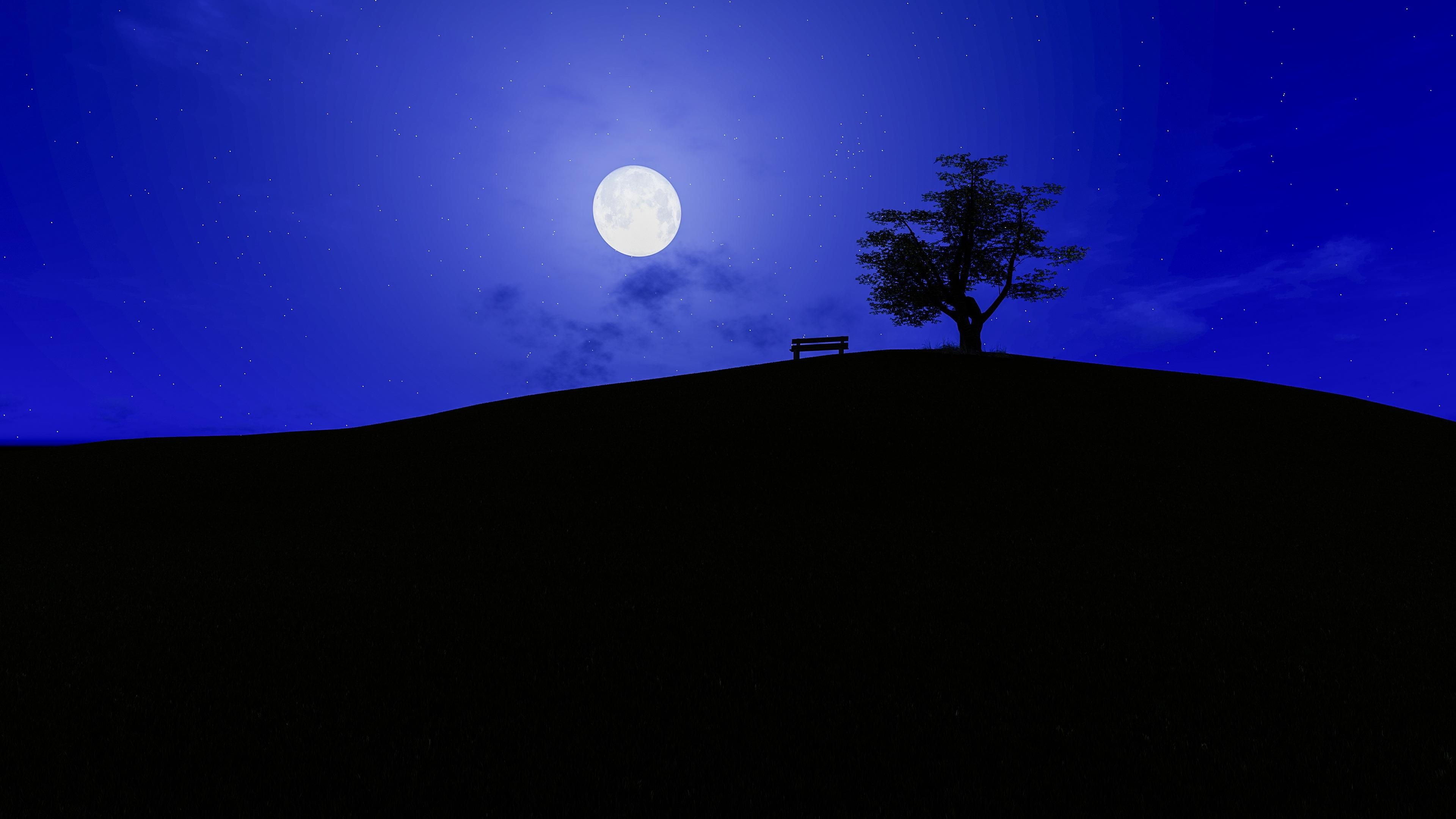 Сияние луны на звездном небосводе отражает силуэт дерева на холме