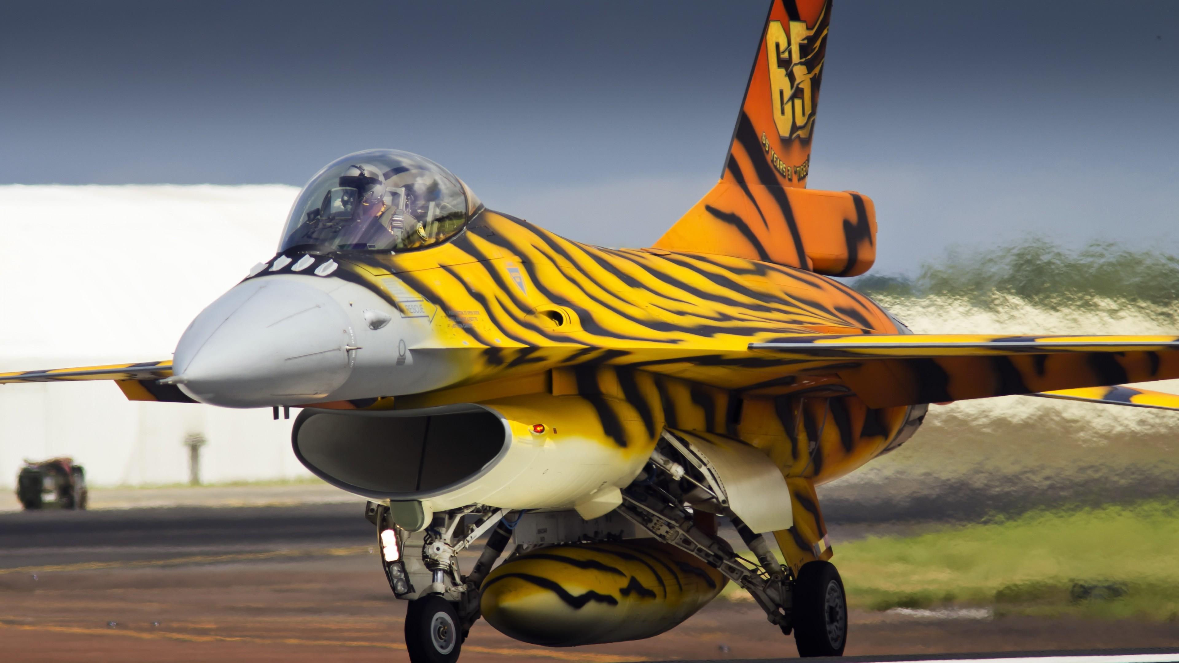 Самолет-истребитель в тигровой окраске с цифрой 65 на взлетной полосе