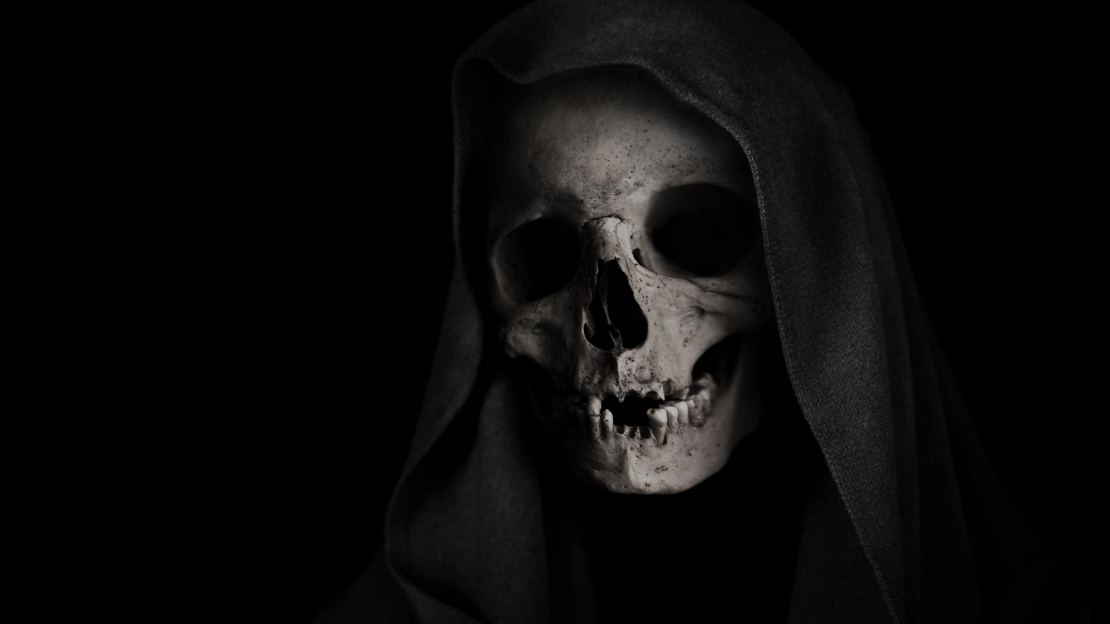 Голова черепа с темными глазницами и челюстью с остатками зубов